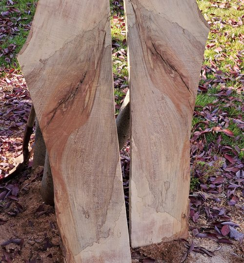Reclaim Wood 2 1000